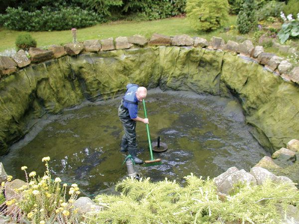 17 best images about koi pond on pinterest japanese for Koi pond water quality
