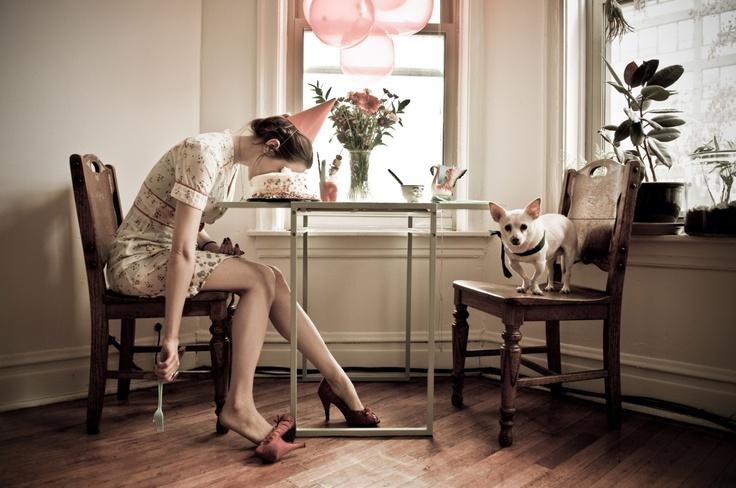 Cake & dog