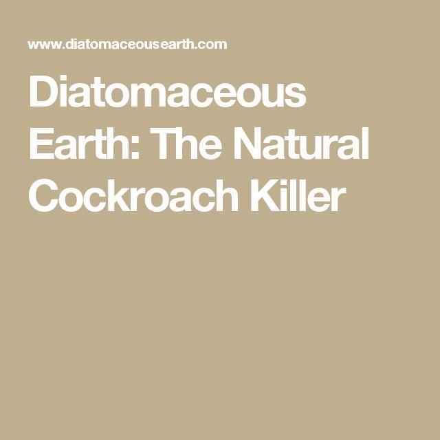 Diatomaceous Earth: The Natural Cockroach Killer