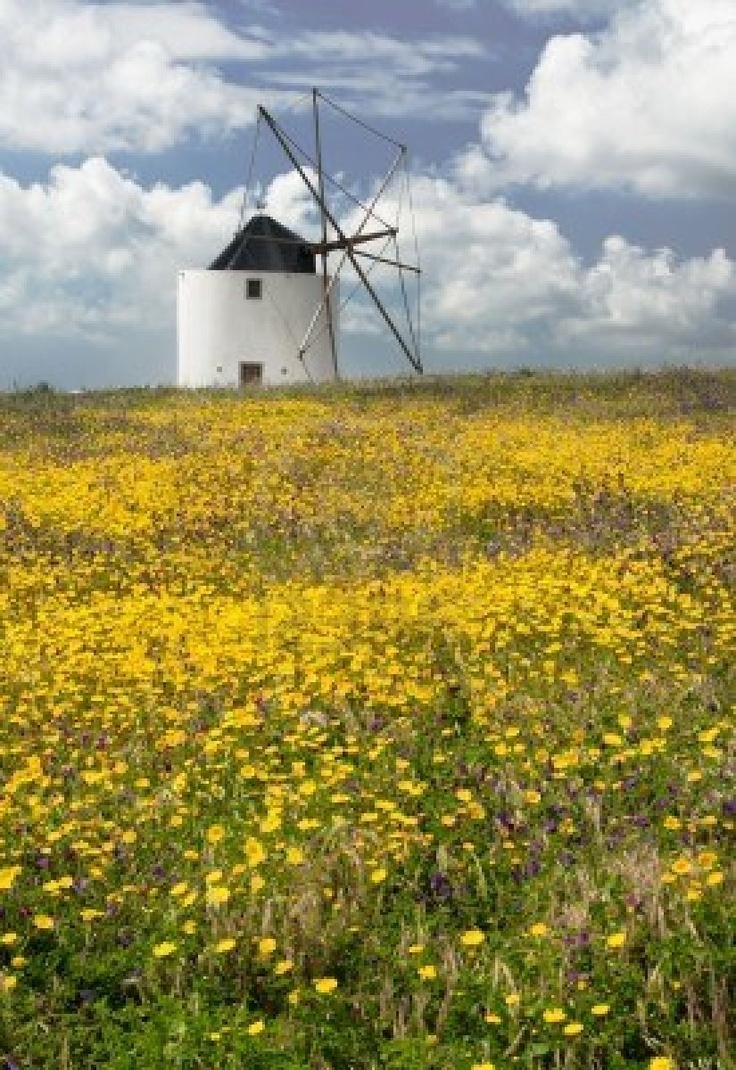 Moinho de vento, ODECEIXE, Portugal. http://www.visitalgarve.pt/visitalgarve/vEN/DescubraARegiao/140/Concelhos/Aljezur/Municipality | Photo: Tiago Estima @ 123RF. http://www.123rf.com/photo_3381897_windmill.html