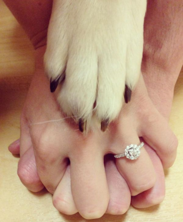 The cutest ways to announce you're engaged on Instagram: http://www.stylemepretty.com/2016/01/11/unique-ways-to-announce-youre-engaged-on-instagram/