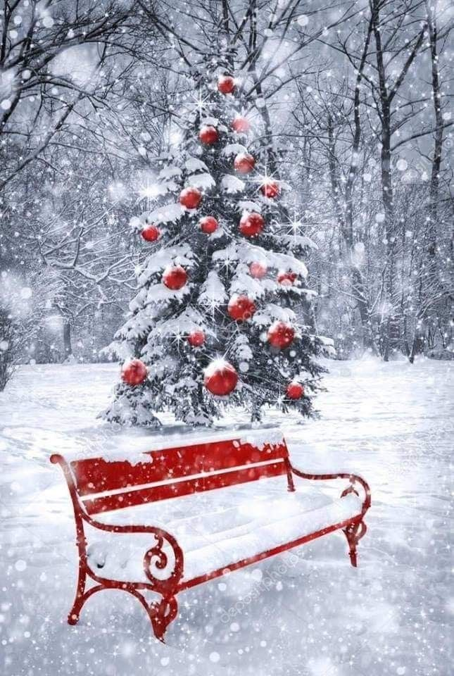 Snowy ☃ red bench, with red bulbs for the tree