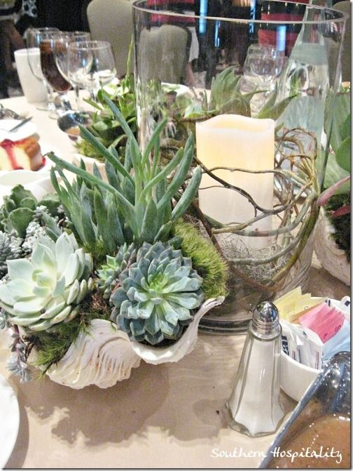 shells and succulents in center pieces or bouquets.