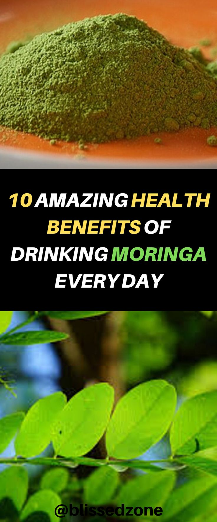 What is moringa,moringa benefits for men,moringa benefits