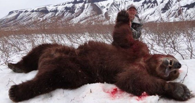 National Geographic Must Avoid Broadcast Programs of Animals Huntings
