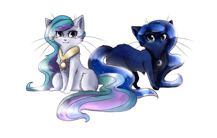 my little warrior cat | Wonderbolt Academy: My Little Pony Friendship is Magic