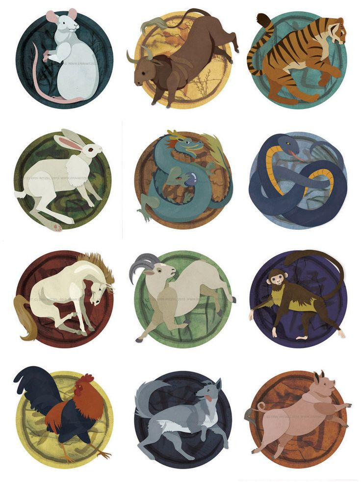 Based on the birth date twelve-year cycle on a Chinese Zodiac Signs. Description from pocketsymphony.com. I searched for this on bing.com/images