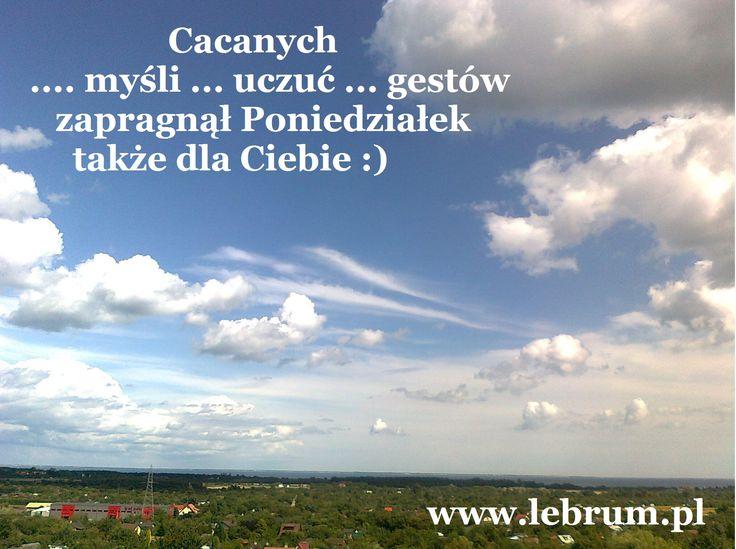 Poniedziałek Cacanych Myśli ... Przemyślenia o poranku : http://pierwszamysl.blogspot.com/ o miłosnych perypetiach : http://iruchna.blogspot.com o szukaniu pracy : http://bez-etatu.blogspot.com/ Widok z okna i komentarz poranka: http://jakimon.blogspot.com