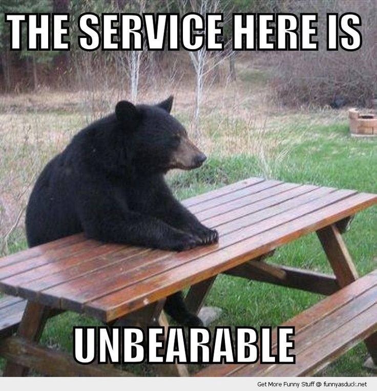 The Service Is Unbearable