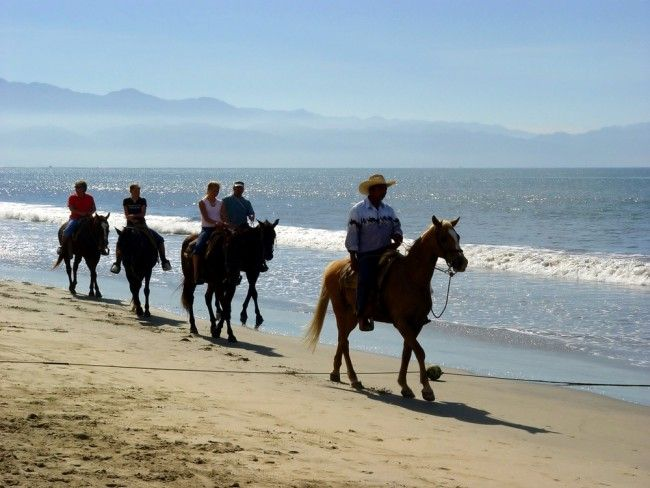 Heavenly Stables - Beach riding and horse riding near Port Elizabeth, Eastern Cape