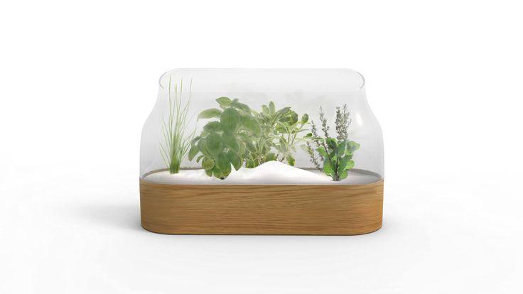 Eden // aromatic garden by Studio Woy