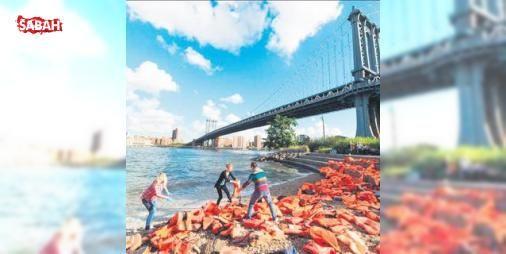 Mülteci sorununa dikkat çektiler: ABDde Birleşmiş Milletler zirvesi öncesi mülteci krizine dikkat çekmek için yüzlerce can yeleği Brooklyn Köprüsü çevresine yerleştirildi
