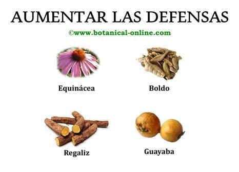 Aumentar las defensas salud pinterest - Alimentos para subir las defensas ...