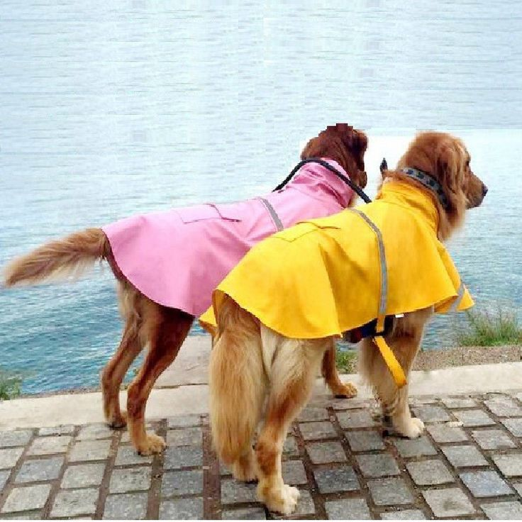 Type: Dogs Brand Name: Brand new Material: PU Model Number: 0051 Pattern: Solid Product Category: Raincoat Style: leisure To apply a gender: General Place of origin: made in China Color: blue,orange,y
