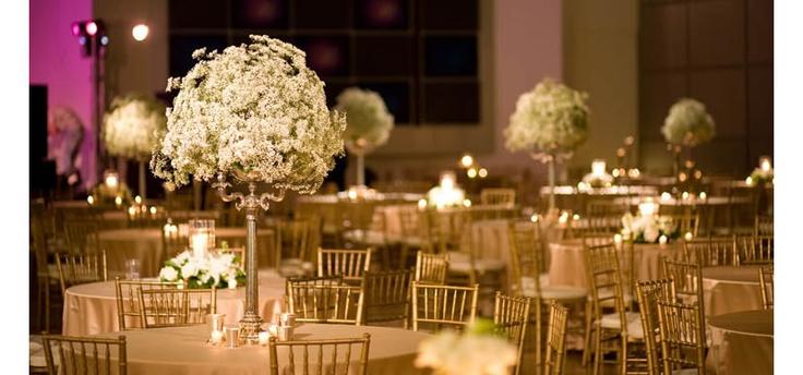 Best artola correa wedding images on pinterest