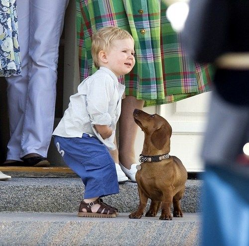 yoursweetremedy:  Young Prince Christian with one of his grandparents' Dachshunds at Gråsten