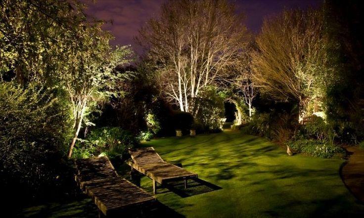 grand jardin vert décoré de lampes solaires cachées entre la végétation