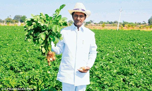 #Telangana CM #KCR the Multi Talented Person:  http://www.thehansindia.com/posts/index/2014-06-14/KCR-the-omnipotent-98453