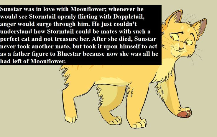 I don't know if it's true but woah! And I hate how stormtail didn't stay loyal to Moonflower