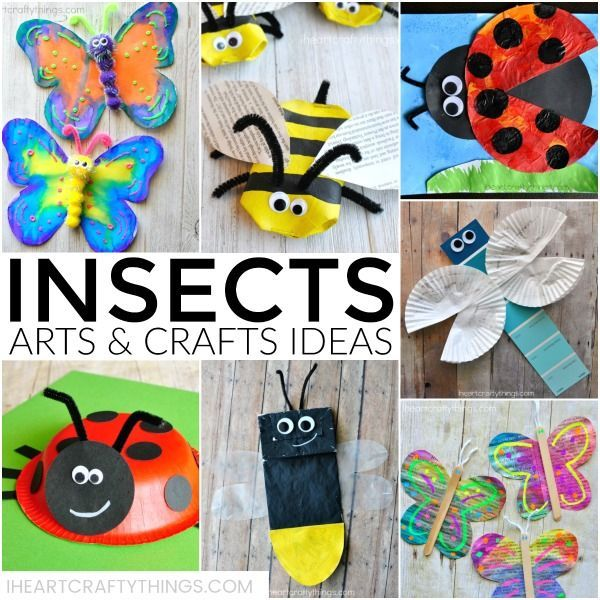 3310 best preschool crafts images on pinterest crafts for Bugs arts and crafts