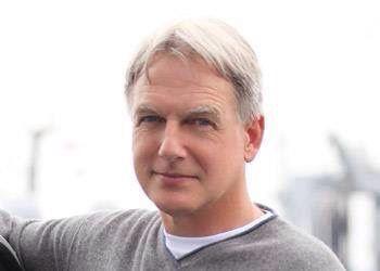 Mark                                                                                                                                                                                 Mehr