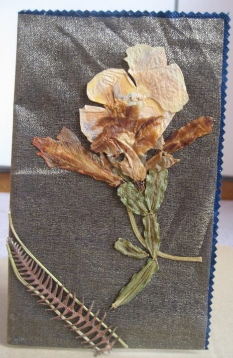card with dried leafs  https://www.etsy.com/listing/98992630/card-with-dried-leafs