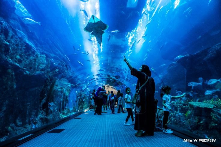Family time in Dubai Aquarium tunnel. ANIA W PODRÓŻY travel blog and photography