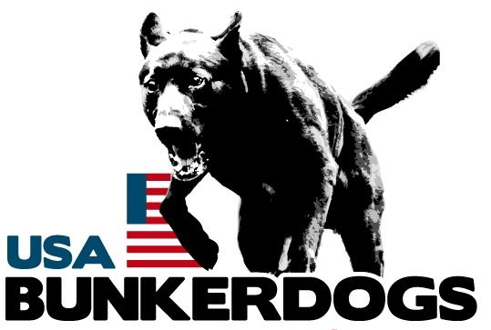 BunkerdogsUSA. Quality Dutch Shepherd dogs for sale. KNPV and police dog bloodline.