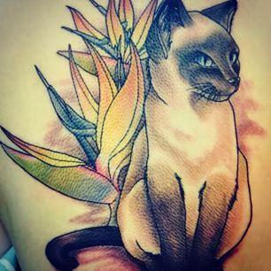 siamese cats tattoo designs - Google'da Ara
