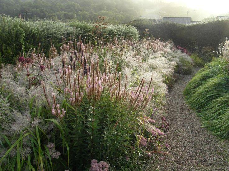 Dove Cottage Nursery Garden