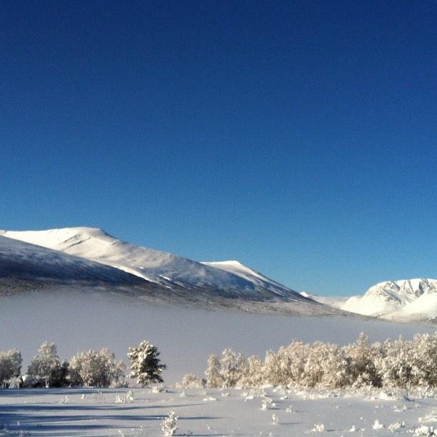Winter in Oppdal -Instagram photo by @onatina74 #travel #norway #oppdal