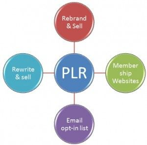 Use Weight Loss PLR Content to Promote Your Blog. #weightlossplr #plrcontent #plrarticles