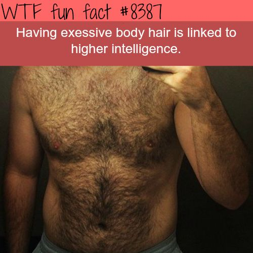 Body Hair is linked to higher intelligence  WTF fun facts