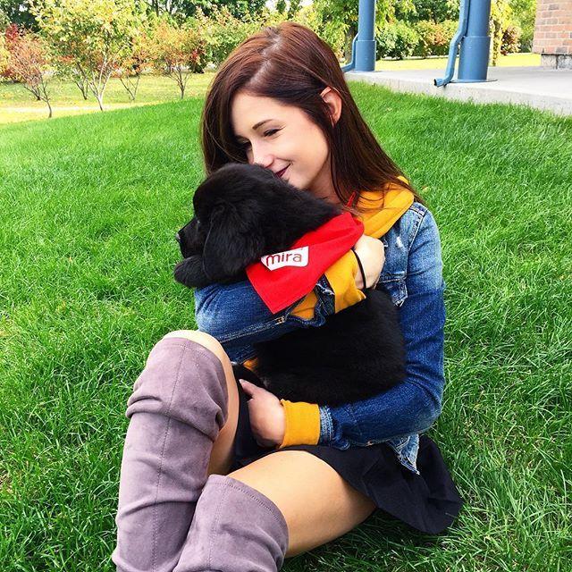 Ce petit chien!!!  La fondation Mira m'a invité à vister ses bâtiments cette semaine! C'ÉTAIT REMPLIE DE PUPPIES!!! c'est fou à quel point les chiens sont intelligents et peuvent nous aider dans nos vies! c'est vraiment des meilleurs amis pour l'homme ❤️ haaaaa je les aime trop! Et les gens qui les entraine font vraiment du bon travail! Bravo! Leur site web pour plus d'infos ET pour faire des dons : www.vpourmira.ca  #puppylove