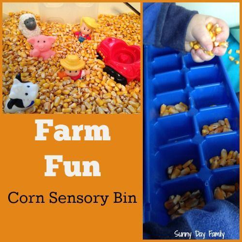 Farm Fun: Corn Sensory Bin. Great activity for toddlers who love farms!