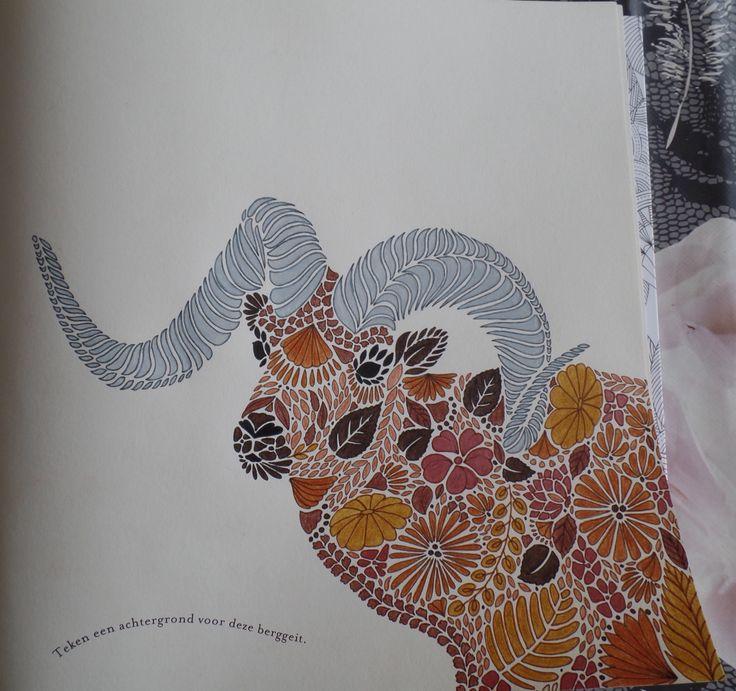 Millie Marottas Animal Kingdom Colours By Me Milliemarotta Animalkingdom Adultcoloring