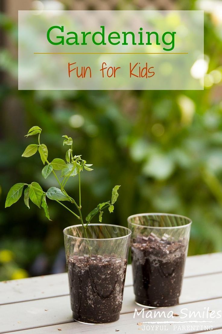Fun And Easy Psychic Games: 17 Best Images About Garden & Flower Activities For Kids