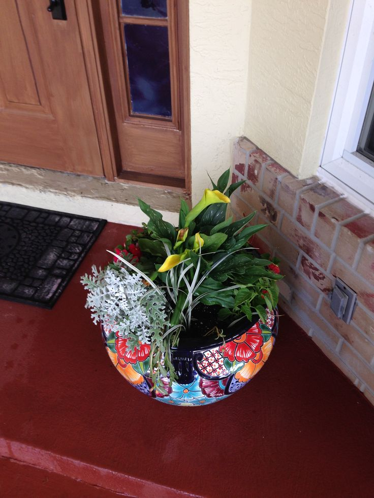 25 Best Images About Our Frugal Garden On Pinterest