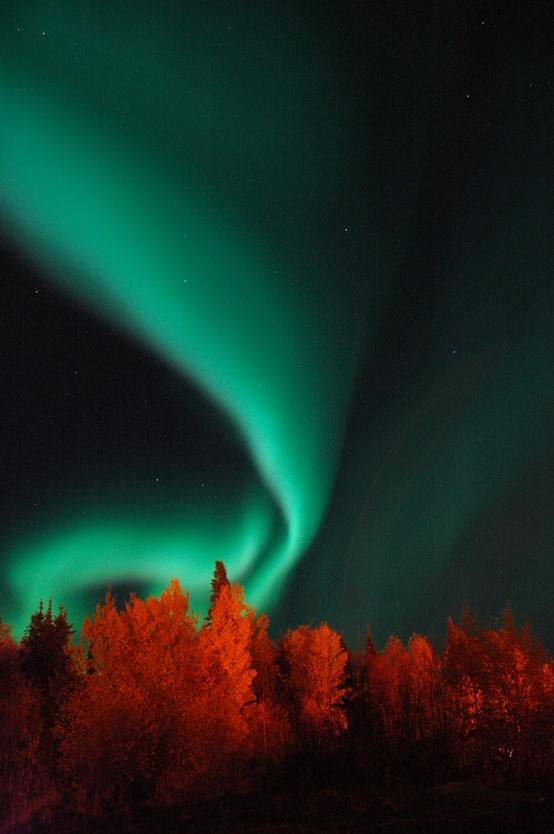 October Aurora by Steve McDougall (Northern Lights in Northern Manitoba, Canada)