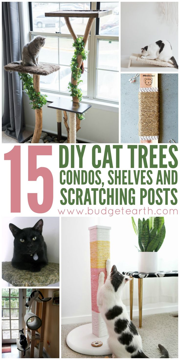 15 Diy Cat Trees, Condos, Shelves, And Scratching Posts