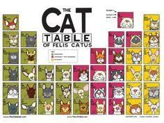 Image result for dog table of elemutts