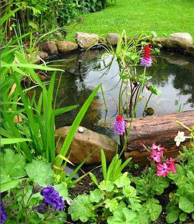 Natural Garden Pond Who says a backyard pond has to be big to be beautiful? This small water feature has a simple pump to keep the water moving