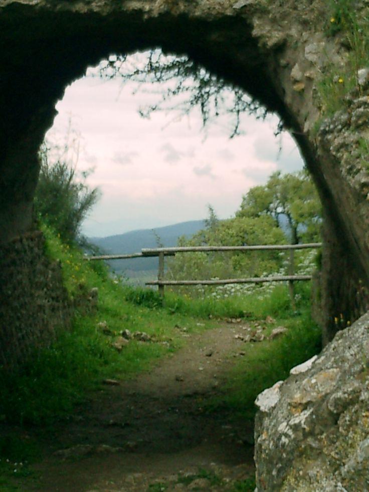Vetulonia - 2007