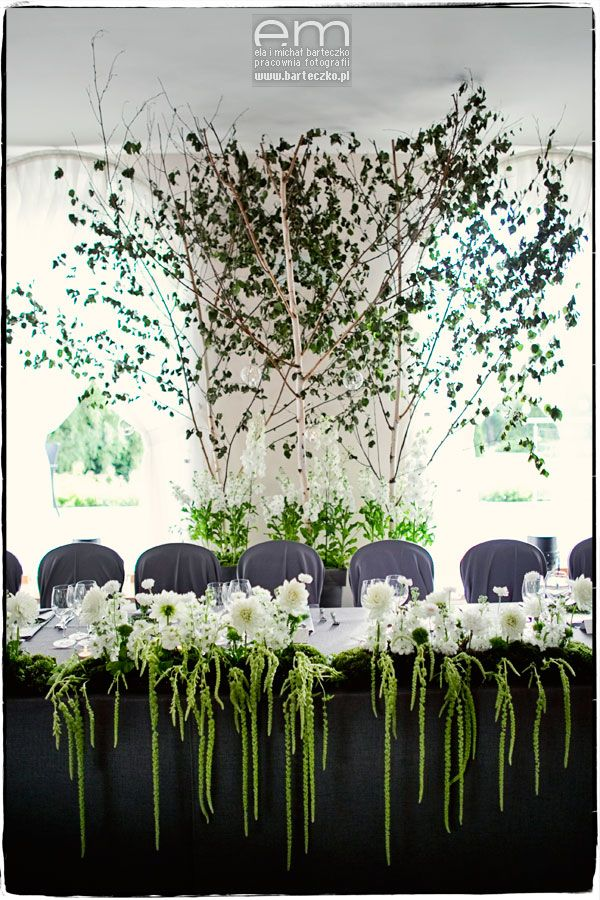 Birch-tree wedding woodland, Poland, create by artsize.pl