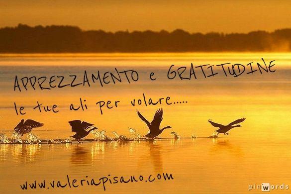 #apprezzamento #gratitudine  www.valeriapisano.com