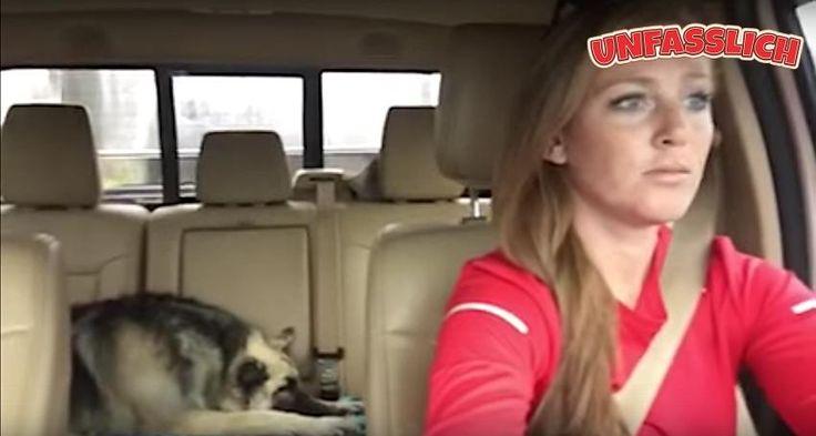 """Lustiges Video: Frau und ihr Hund singen """"We Are The Champions"""" http://unfasslich.com/lustiges-video-frau-und-ihr-hund-singen-we-are-the-champions/ #unfasslich #blog #tipps #tricks #lifestyle #news #unglaubliches #hilfreiches #neuigkeiten #interessantes"""