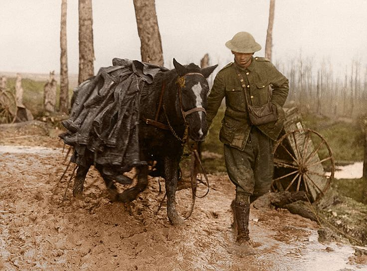 THE SOMME in Color 1916-2016: A British solider leads a horse laden with dozens of pairs of trench boots through thick mud as the British Army continues the Somme offensive.