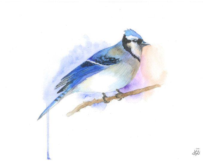 Blue Jay afdrukken Blue jay kunst Blue jay aquarel vogel kunst vogel aquarel vogel print vogel home decor Blue jay schilderij schilderen vogel afdrukken