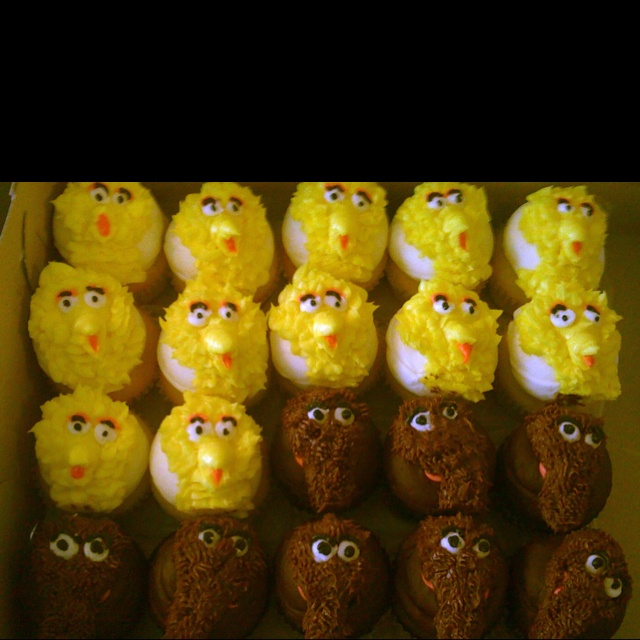 Snuffy & Big Bird birthday party cupcakes from Main Street Cupcakes!  Lexi's 2nd Birthday!!