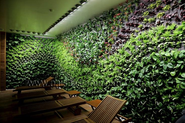 Mejores 28 im genes de jardin vertical en mallorca en for Jardin vertical materiales